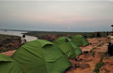 Camping with Canyon view