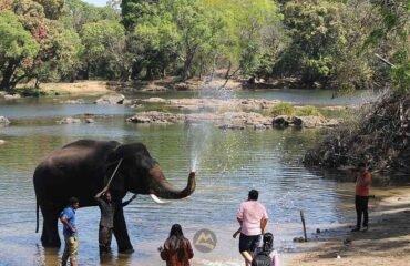 Dubare-Elephant-Camp