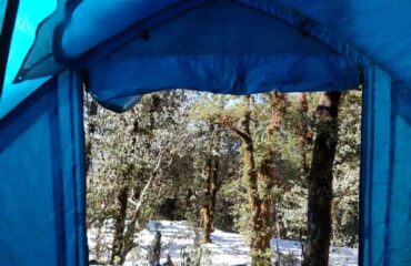 From-inside-the-tent