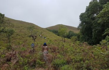 Grasslands to Kudremukh peak