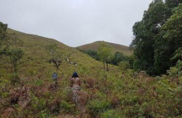 Grasslands to Kudremukh peak