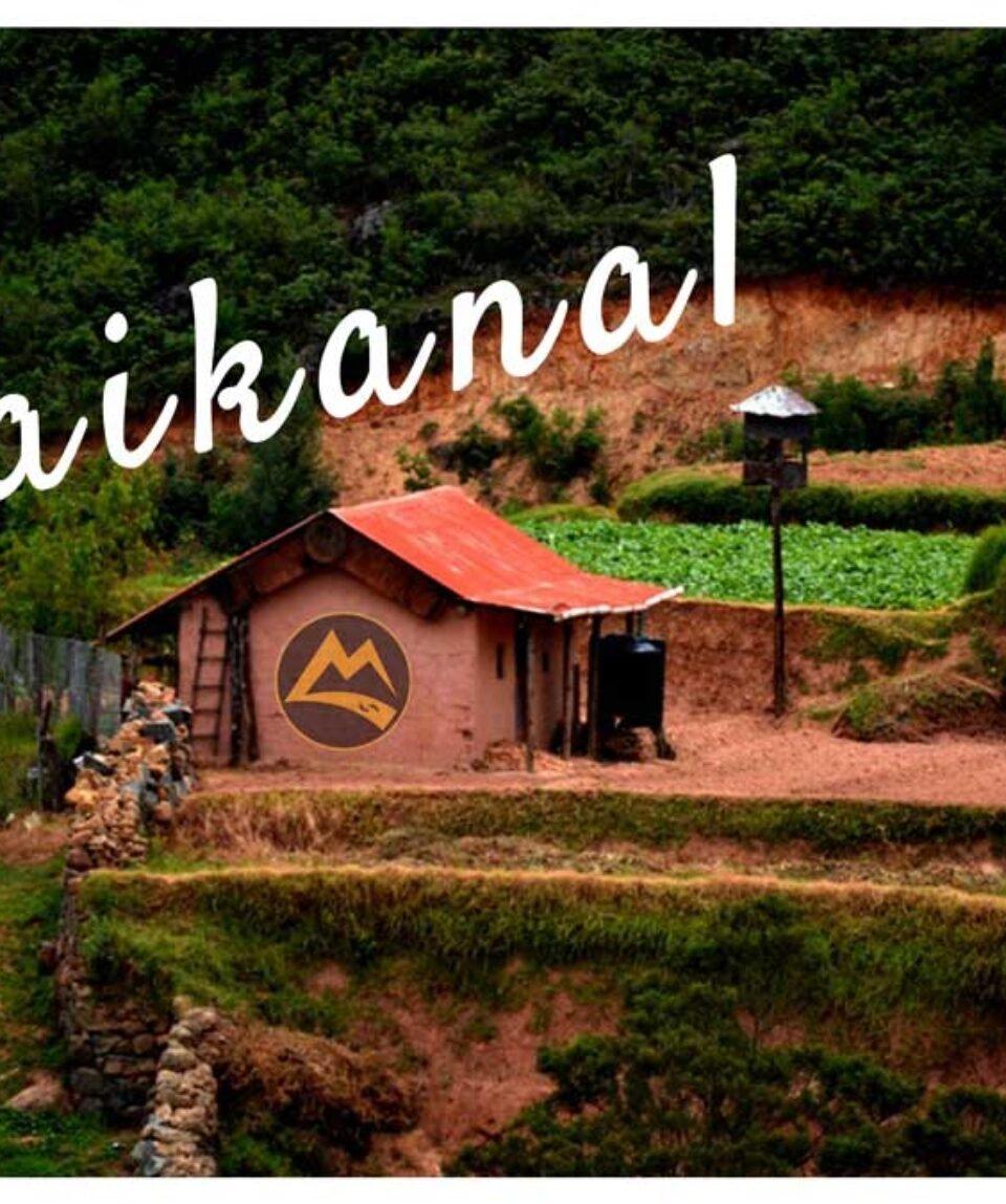 Kodaikonal-Trip-Vattakanal-Trek-Bangalore