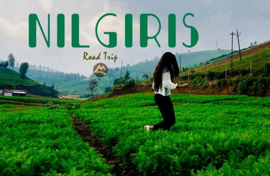 Nilgiris Road Trip
