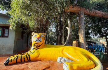 Tiger Reserve Safari Entrance