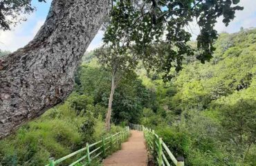 Stairs to Mallelatheertham falls